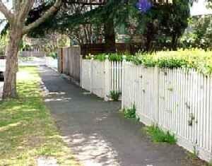 Mary Dean murder - 5 addison street elwood